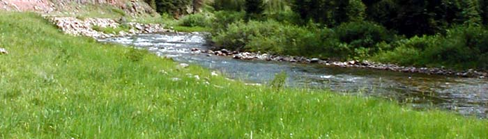 The Grays River in the Wyoming Range